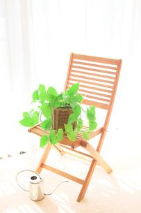 ポトスと椅子 じょうろの写真素材 [FYI02078991]