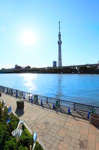東京スカイツリーと隅田川 太陽の写真素材 [FYI02079319]