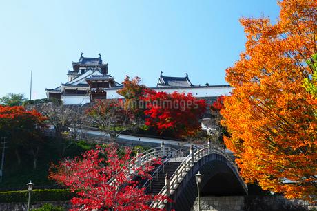 福知山城と紅葉の写真素材 [FYI02079531]