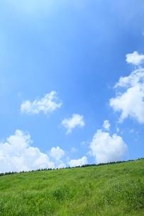 緑の草原と白雲の写真素材 [FYI02079622]