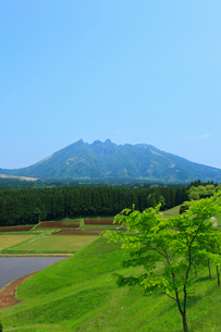 月廻りより望む阿蘇山の根子岳の写真素材 [FYI02079801]
