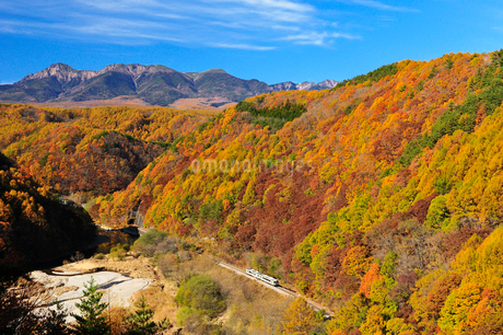 JR小海線と紅葉 八ヶ岳の写真素材 [FYI02079804]
