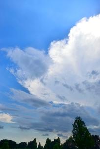 青空と雲の写真素材 [FYI02079895]