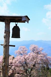 火の見櫓と桜堂の瓢箪サクラの写真素材 [FYI02080201]
