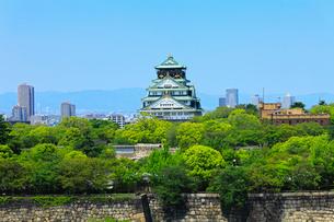 新緑の大阪城の写真素材 [FYI02080227]