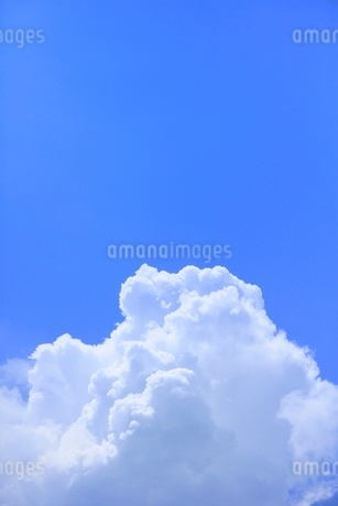 入道雲と青空の写真素材 [FYI02080422]