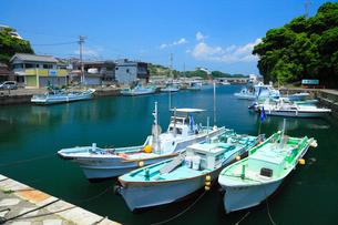 波切漁港の写真素材 [FYI02080437]