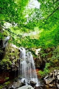 赤滝と新緑の写真素材 [FYI02080442]