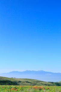 霧ヶ峰高原のレンゲツツジと南アルプスの写真素材 [FYI02080622]
