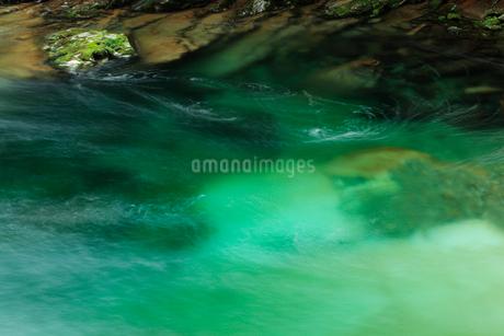 面河渓の流れの写真素材 [FYI02080756]