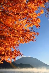 紅葉の中禅寺湖と朝霧に男体山の写真素材 [FYI02080942]