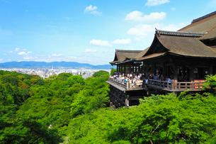 新緑の清水寺の写真素材 [FYI02081442]