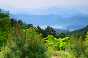 熊野古道中辺路 はらいどの展望台から望む大斎原と山並みの写真素材 [FYI02081483]