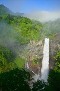 新緑の華厳の滝と霧の写真素材 [FYI02081502]