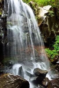 赤滝と新緑の写真素材 [FYI02081504]