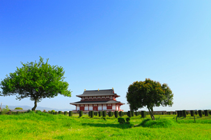 大極殿 平城京跡の写真素材 [FYI02081568]