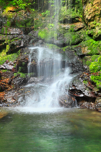 新緑と琵琶の滝の写真素材 [FYI02082043]
