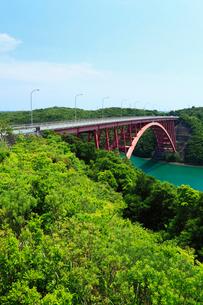 的矢湾大橋と新緑の写真素材 [FYI02082115]