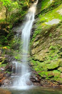 新緑と琵琶の滝の写真素材 [FYI02082188]