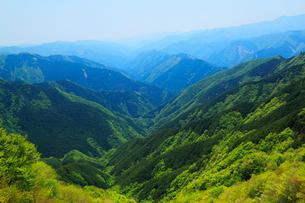 大台ケ原ドライブウエイから望む山並みと新緑の写真素材 [FYI02082364]