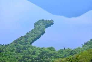 新緑の中禅寺湖と八丁出島の写真素材 [FYI02082435]