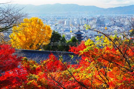 八坂の塔と紅葉 京都市街の写真素材 [FYI02082475]