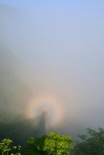 ブロッケン現象の写真素材 [FYI02082583]