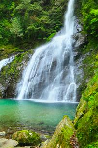 安居渓谷 飛竜の滝の写真素材 [FYI02082920]