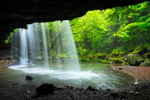 鍋ヶ滝と新緑の写真素材 [FYI02083053]
