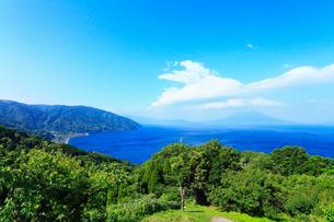 桜島と鹿児島湾の写真素材 [FYI02083076]