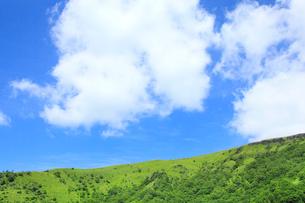 緑の草原と青空の写真素材 [FYI02083152]