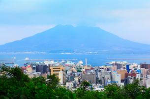 城山展望台から望む桜島・鹿児島湾と市街の写真素材 [FYI02083165]
