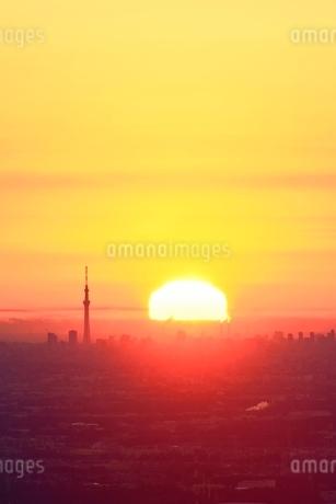 東京スカイツリーと朝日の写真素材 [FYI02083334]