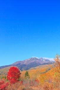 乗鞍高原の紅葉と乗鞍岳の写真素材 [FYI02083340]