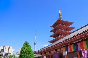 浅草寺五重塔と東京スカイツリーの写真素材 [FYI02083747]