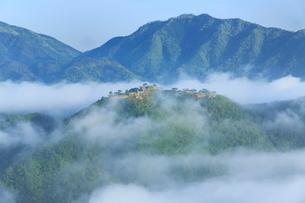 雲海たなびく竹田城の写真素材 [FYI02083784]