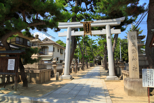 猪名野神社の写真素材 [FYI02083985]