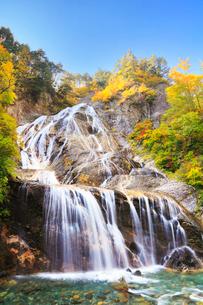 白山スーパー林道 姥ヶ滝と紅葉の写真素材 [FYI02083999]