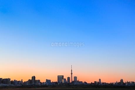 東京スカイツリーと朝焼けの写真素材 [FYI02084091]