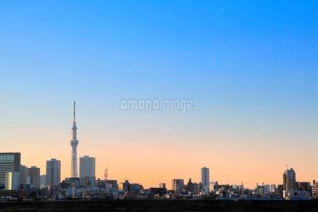 東京スカイツリーと朝焼けの写真素材 [FYI02084095]