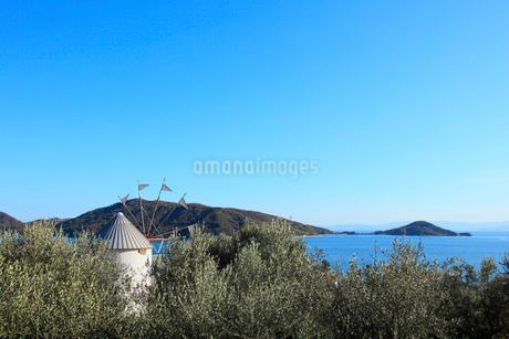 小豆島オリーブ公園 オリーブとギリシャ風車の写真素材 [FYI02084158]