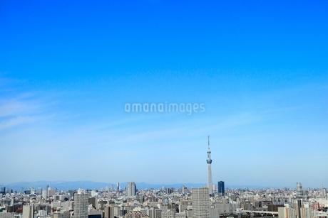 東京スカイツリーと街並みの写真素材 [FYI02084201]