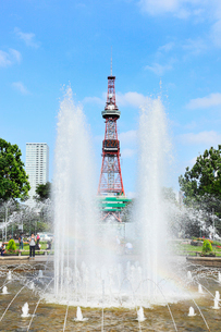 大通公園と札幌テレビ塔の写真素材 [FYI02084225]