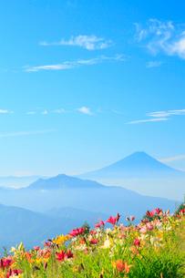 ユリの花と富士山の写真素材 [FYI02084290]