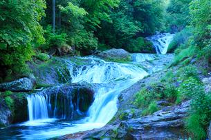 おしどり隠しの滝と新緑の写真素材 [FYI02084511]