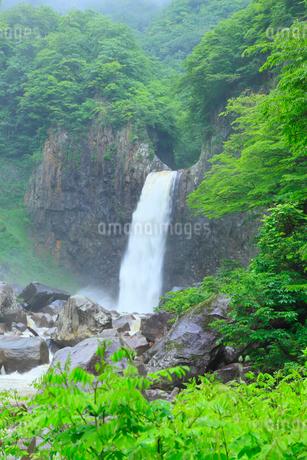 新緑の苗名滝の写真素材 [FYI02084525]