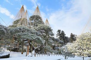 雪化粧の兼六園の写真素材 [FYI02084552]