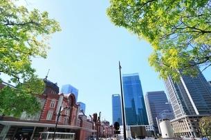 東京駅と丸の内ビル群に新緑の写真素材 [FYI02084561]