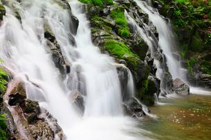 緑の苔と滝の写真素材 [FYI02084619]