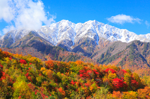 爺ガ岳と紅葉の写真素材 [FYI02084643]